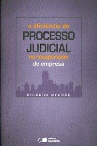 A Eficiência do Processo Judicial na Recuperação de Empresa